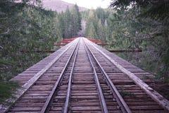 De brug achter takken Stock Afbeelding