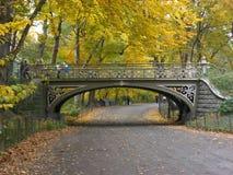 De Brug & de Weg van het Central Park Stock Fotografie