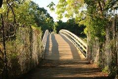 De brug bij het Gedaalde Park van de Weidestaat, NY Stock Afbeelding
