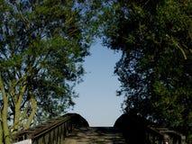 De brug en de bomen van vestingmuur royalty-vrije stock foto's