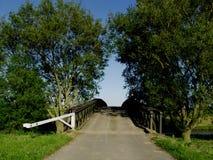 De brug en de bomen van vestingmuur stock foto