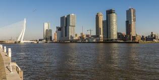 De Brug en de Kusten van Rotterdam Wilhelminapier Stock Foto