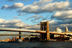 De brug New York van Brooklyn Stock Foto