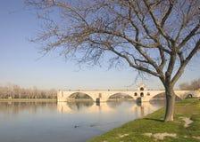 De brug van Avignon in de winter, Frankrijk, Europa royalty-vrije stock foto