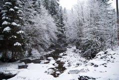 De brug van de bergrivier in het bos van de bergwinter met snow-covered bomen en sneeuwval Stock Foto's