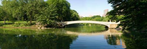 De Brug van de boog bij Central Park Royalty-vrije Stock Foto's