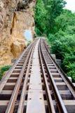 De brug van de Doodsspoorweg langs de klip en de boom Royalty-vrije Stock Fotografie