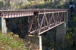 De brug van de heks - oude spoorweg op eiland Sakhalin Royalty-vrije Stock Foto