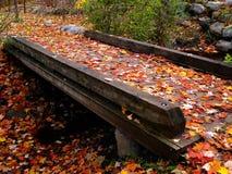De brug van de herfst Royalty-vrije Stock Afbeeldingen