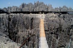 De brug van de kabel Royalty-vrije Stock Foto