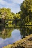 De brug van de rivier Stock Fotografie