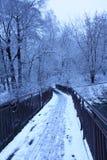 De Brug van de rivier in de winter Stock Afbeeldingen