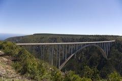 De brug van de Rivier van Bloukrans (216 m) Royalty-vrije Stock Foto's