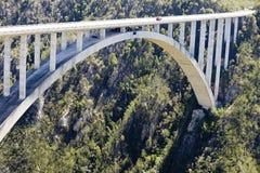 De brug van de Rivier van Bloukrans (216 m) Royalty-vrije Stock Afbeelding