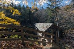 De brug van de schildwachtpijnboom in het park van de staat van de franconiainkeping, nieuwe hampshir royalty-vrije stock afbeelding