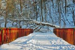 De brug van de sneeuw Stock Foto's