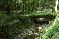 De brug van de steen Stock Foto
