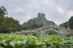 De brug van de steenboog in lotusbloemvijver Stock Foto's