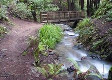 De brug van de stroom en van de voet royalty-vrije stock afbeelding