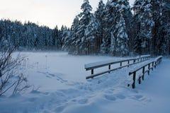De brug van de winter Stock Foto
