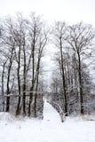 De brug van de winter Stock Foto's