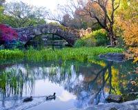 De brug van Gapstow in Central Park Stock Foto