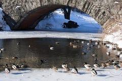 De Brug van Gapstow in de Winter binnen Central Park Royalty-vrije Stock Afbeeldingen