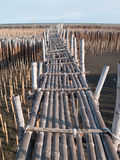 De brug van het bamboe Stock Foto