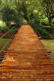 De Brug van het bamboe Stock Foto's