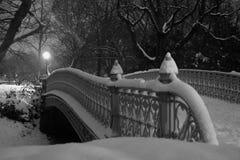 De Brug van het Central Park Stock Foto