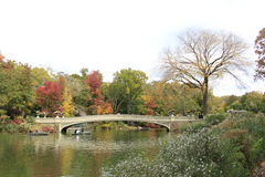 De Brug van het Central Park Royalty-vrije Stock Foto's