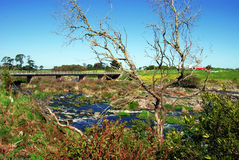 De brug van het land Royalty-vrije Stock Fotografie
