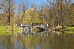 De brug van het park Stock Afbeeldingen