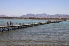 De brug van het ponton Royalty-vrije Stock Foto