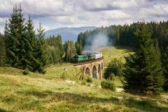 De brug van het spoorwegviaduct in de Oekraïne met de stoomtrein stock afbeeldingen