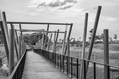 De Brug van Kelong, Punggol Waterweg, Singapore Stock Foto's
