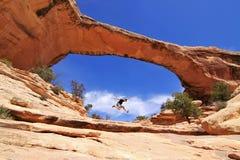 De Brug van Owachomo in Natuurlijke Bruggen, Utah Stock Foto's