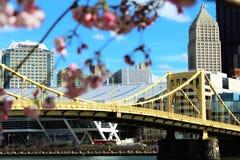 De Brug van Pittsburgh Stock Foto's