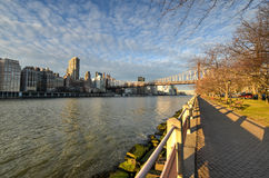 De Brug van Roosevelt Island en Queensboro-, Manhattan, New York Stock Foto