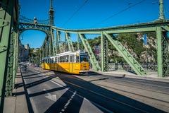 De brug van de vrijheid in Boedapest Stock Afbeelding