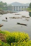 De brug van Ziyang Royalty-vrije Stock Afbeelding