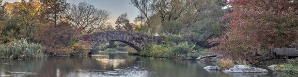 De brugCentral Park van Gapstow, de Stad van New York Stock Foto