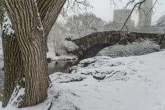 De brugCentral Park van Gapstow, de Stad van New York Royalty-vrije Stock Afbeelding