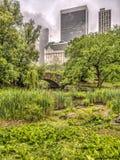 De brugCentral Park van Gapstow, de Stad van New York Stock Afbeeldingen