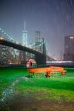 De brugregen van Brooklyn Stock Fotografie