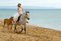 De bruid Royalty-vrije Stock Afbeeldingen