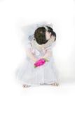 De bruid Royalty-vrije Stock Fotografie