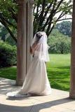 De bruid royalty-vrije stock foto's
