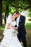 De bruid adn bruidegom van de kus met witte duiven Stock Afbeelding
