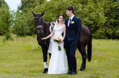 De bruid en de bruidegom bevinden zich in het park dichtbij het paard, huwelijksgang Witte kleding, gelukkig paar met een dier Gr Royalty-vrije Stock Foto